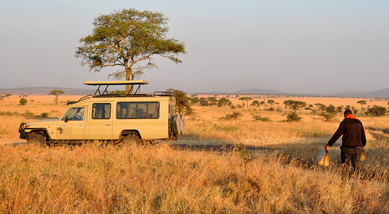 How much does it cost to go on safari Tanzania