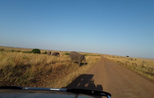 RULES AND SAFE DRIVING TIPS TO TANZANIA