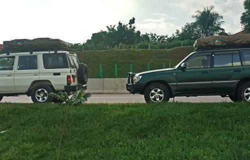 WHY GO ON SELF DRIVE IN TANZANIA